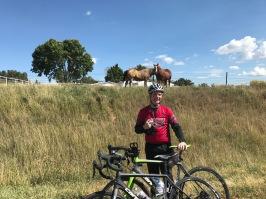 Pat and horses
